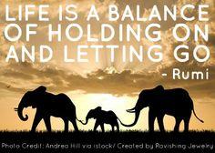 elephants letting go